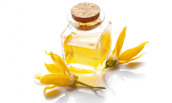 ylang ylang for skin care